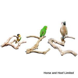 Adventure Bound Java Multibranch For Caged Birds 17cm