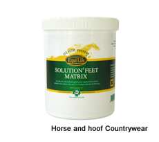 Equilife Solution4 Feet Matrix