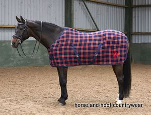 John Whitaker Checked Horse Rug