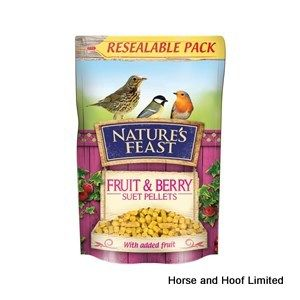 Natures Feast Fruit & Berry Suet Pellets Bird Food 350g