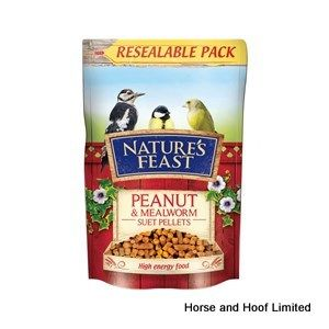 Natures Feast Peanut & Mealworm Suet Pellets Bird Food 350g