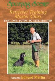 Retriever Training Master Class - Part 1 Puppy to Nine Months